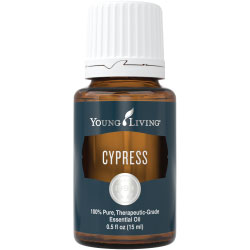 Buy Cypress Essential Oil Here!