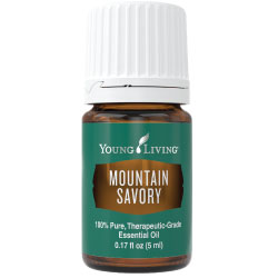 Buy Mountain Savory Essential Oil Here!