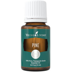 Buy Pine Essential Oil Here!