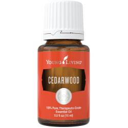 Buy Cedarwood Essential Oil here!