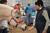 Equine Wellness Expo 2012
