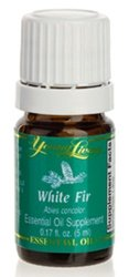 Buy White Fir Essential Oil Here!